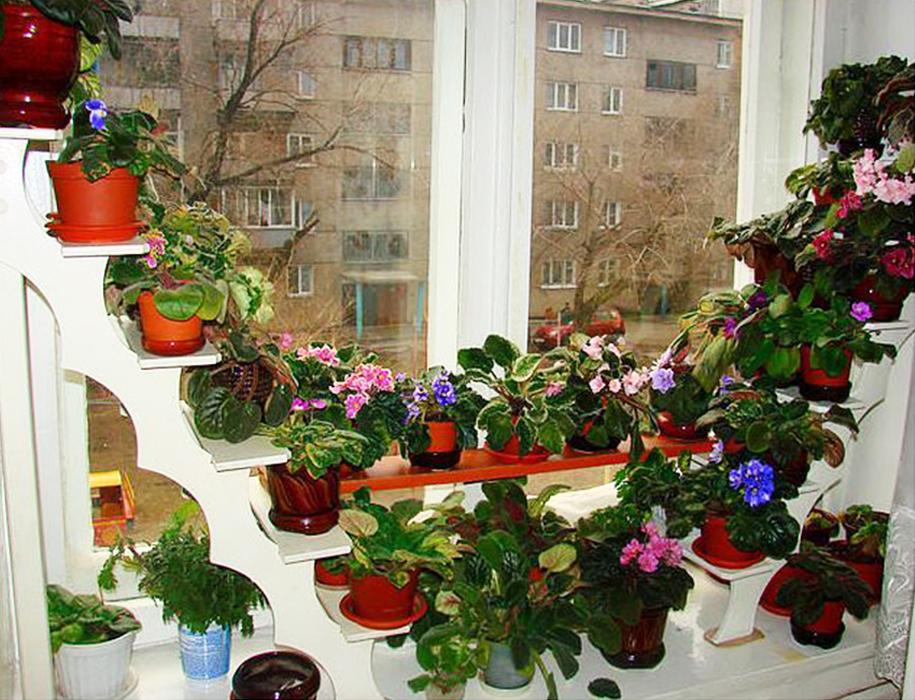 Полка для цветов на балконе фото.